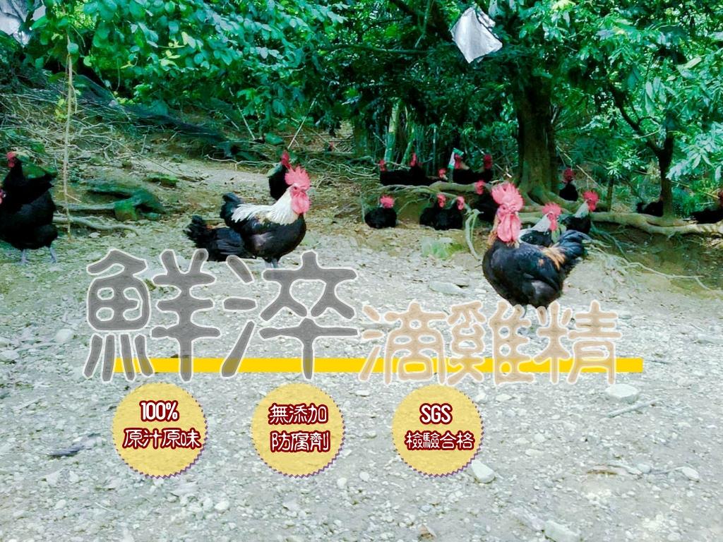 【獨家優惠團購】鮮淬滴雞精。給家人最好的選擇~100%原汁原味無添加的健康好味道
